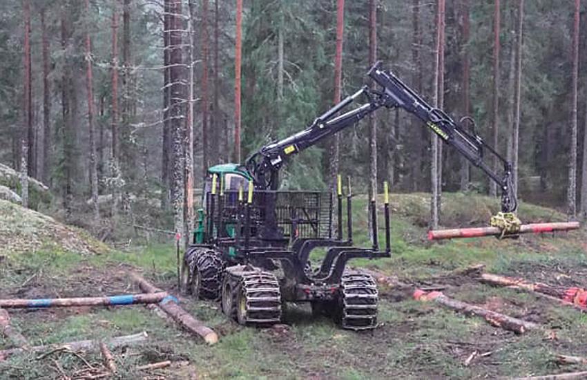 skogsforsk