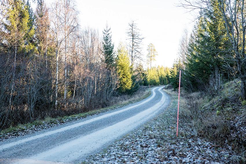 I Norrland har det sedan år 2000 bildats ett flertal stora vägsamfälligheter efter initiativ av Skogsstyrelsen. Vissa föreningar förvaltar nu effektivt upp till 25 mil väg.