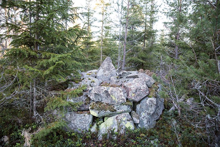 Gränsröse, med stenar staplade på varandra. Även om många gamla stenar och rösen täckts av mossa, barr och grenar brukar de gå att hitta. Foto: Per Eriksson