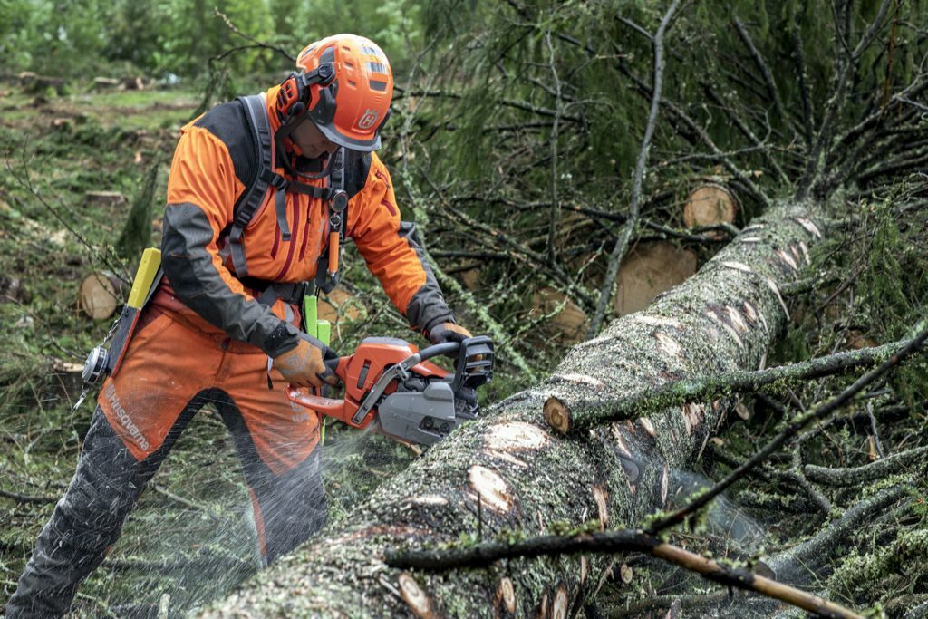 Logging-with-550XP-Mark-II-Anton-Pettersson-H150-0467-1-1024x683