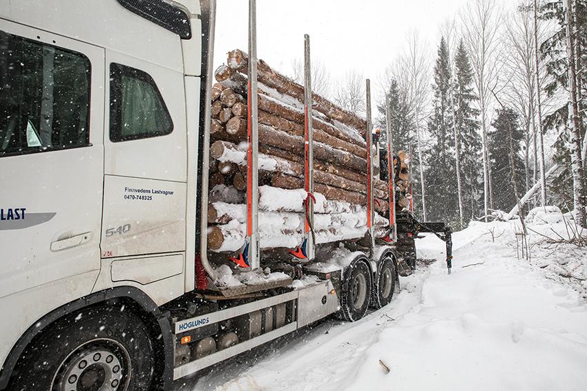 Arbetet med att få ut det stormfällda virket är intensivt och Sveaskogs åkare måste hyra in timmerbilar från andra delar av landet för att hinna med uppdraget. Foto: Per Eriksson