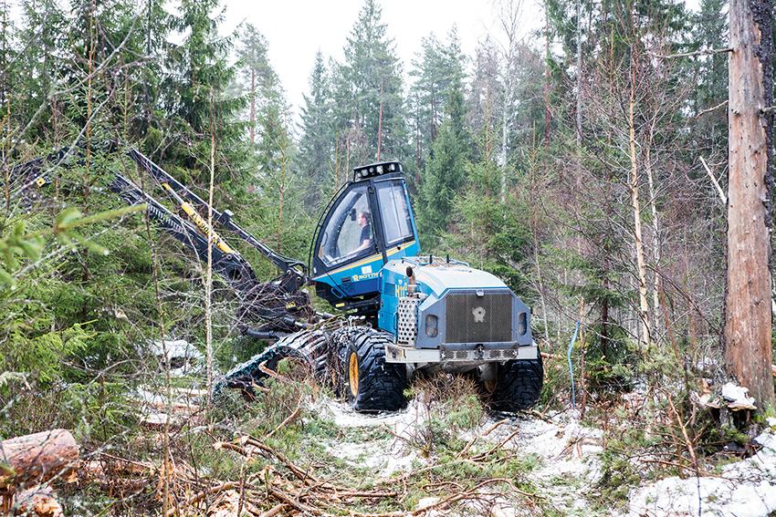 Intresset för att avverka näst högsta på över 20 år. Den areal skogsmark som anmälts för avverkning ökade med 13 procent och en orsak är sommarens omfattande skogsbränder. Foto: Per Eriksson