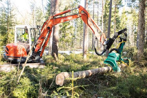Mikael Peterson i Harbo, några mil väster om Uppsala äger och brukar cirka 77 hektar skog. Gallringen gör han med en fem tons Kubotagrävare och ett skördaraggregat från BJM Maskin. Foto: Per Eriksson
