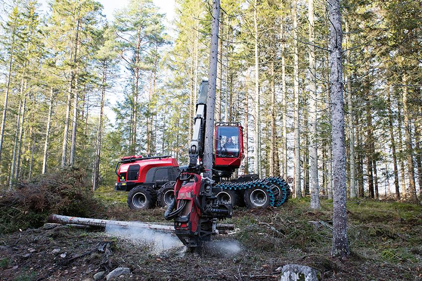 Thomas Håkansson som driver skogsavverkningsföretaget Way Out East Forestry i Nybro, avverkar just nu skog åt en privat markägare strax norr om Kalmar. Det mesta som avverkas är barkborreskadat. Sedan augusti har man avverkat 35.000m³fub. Allt går inte till flisning. Det går alldeles utmärkt att ta vara på en hel del av virket.